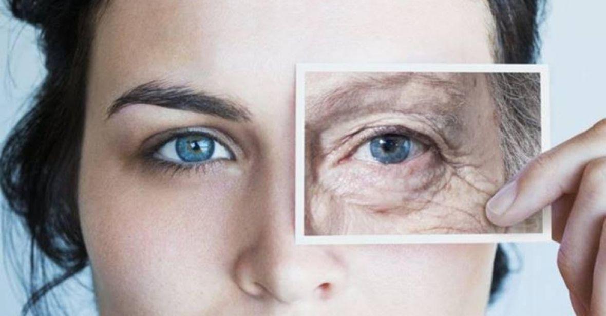 Envelhecer é uma doença que pode ser curada, diz cientista de Harvard Por Rafael Barifouse